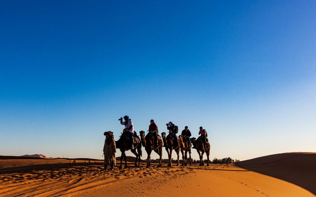 Kraljevski gradovi Maroka, 8 dana