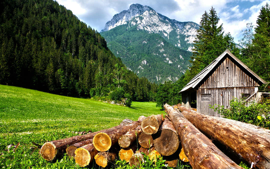 Alpska tura: Švicarska i Italija, 5 dana