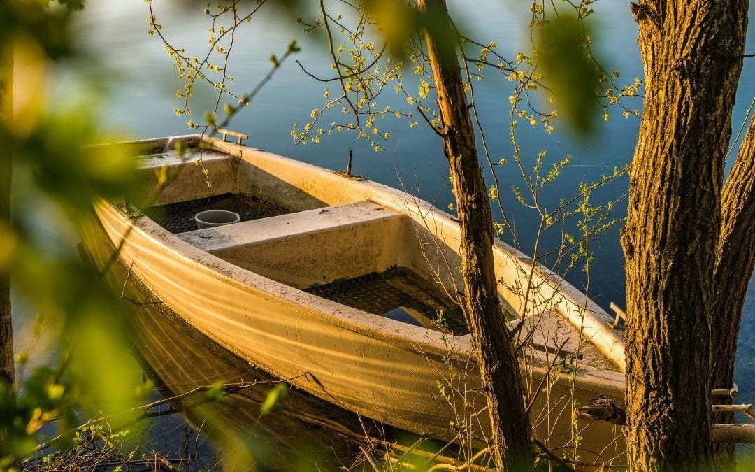 Baranja – Dunavske priče